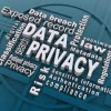 E-Governance and the Protection of Private Information